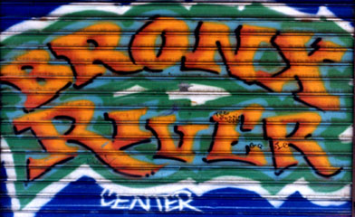Bronx River Center Graffiti.
